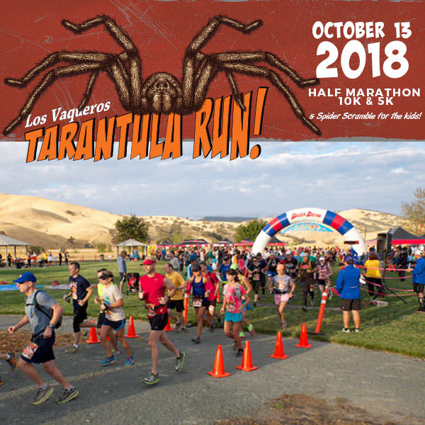 2018-tarantula-run-square