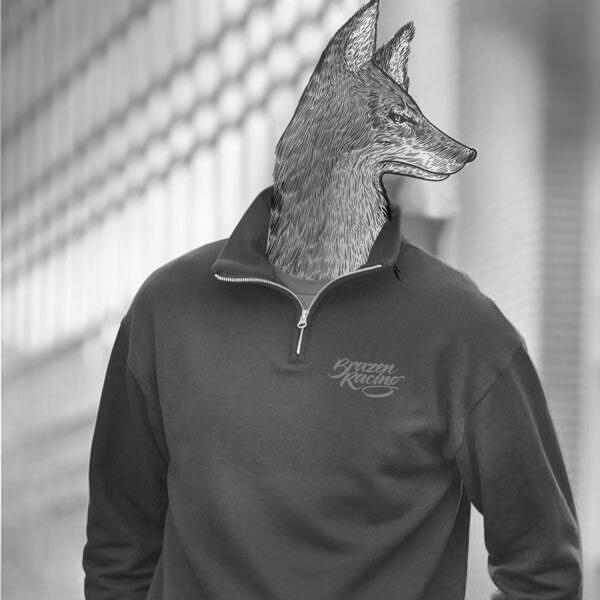 greycoyote600600